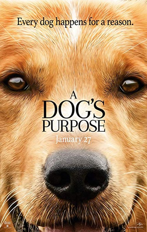 A Dog's Purpose (Film)