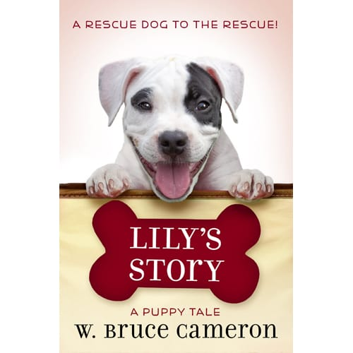 LILY'S STORY by W. Bruce Cameron